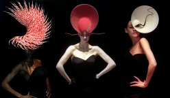 chicquero phillip treacy7