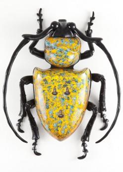 scarabei matteo pugliese chicquero