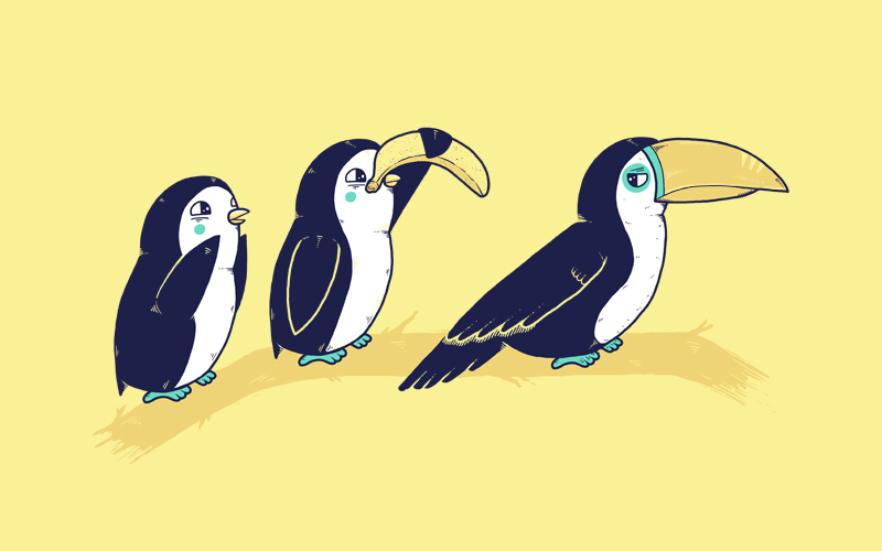cool funny graphic design tucan penguin