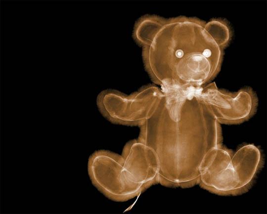 X-Ray photography Nick Veasey teddy bear