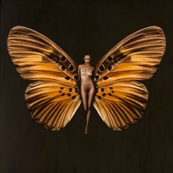 butterfly psyche - naked woman wings cool art - chicquero