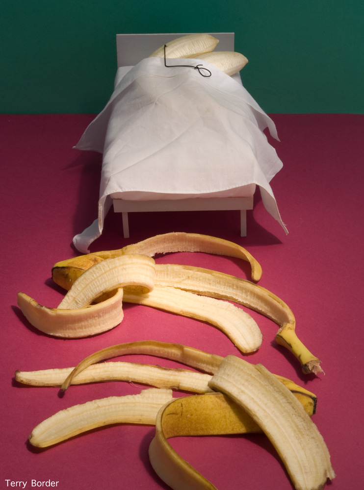 Funny bento objects by Terry Border - banana sex
