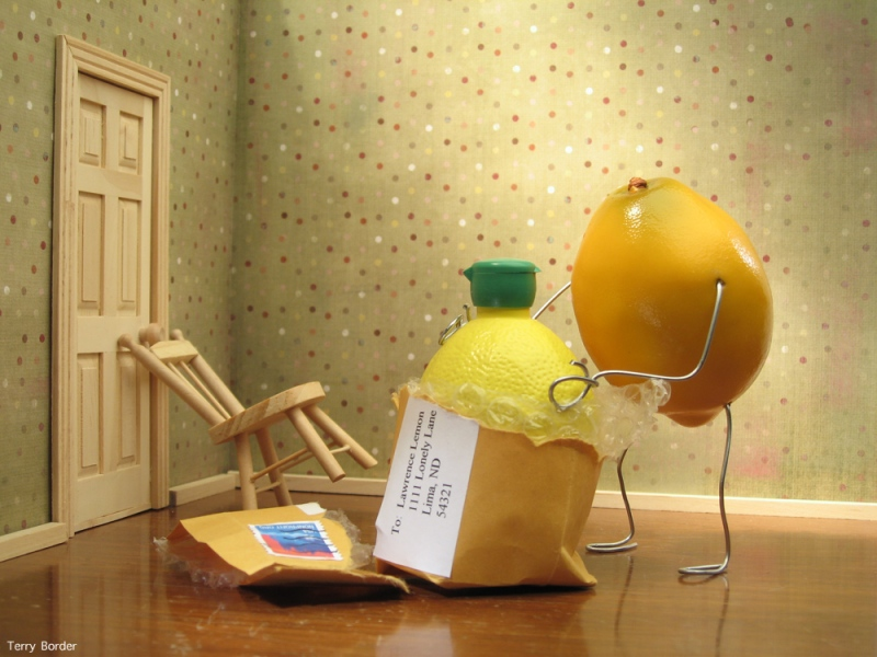 Funny bento objects by Terry Border - inflatable doll