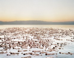 Spencer_Tunick_Dead_Sea chicquero
