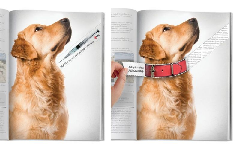 Advertisment marketing branding - aspca adopt a dog