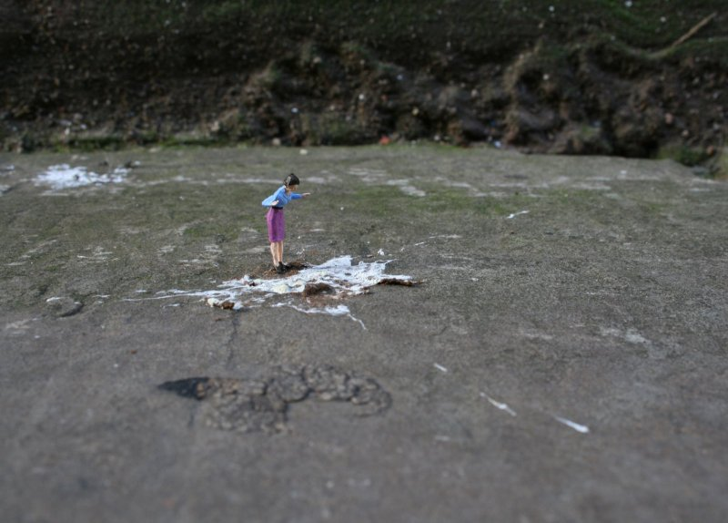 Little people project - cool miniature art - bird poop