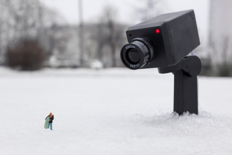 Little people project - cool miniature art -  camera cold