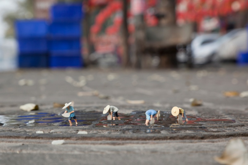 Little people project - cool miniature art - rice plantation