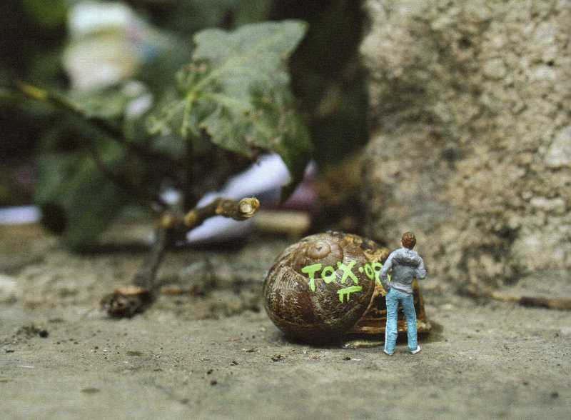Little people project - cool miniature art  snail