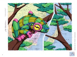 Maps and Illustration - Ric Stultz art - Chicquero artsy - frog australia