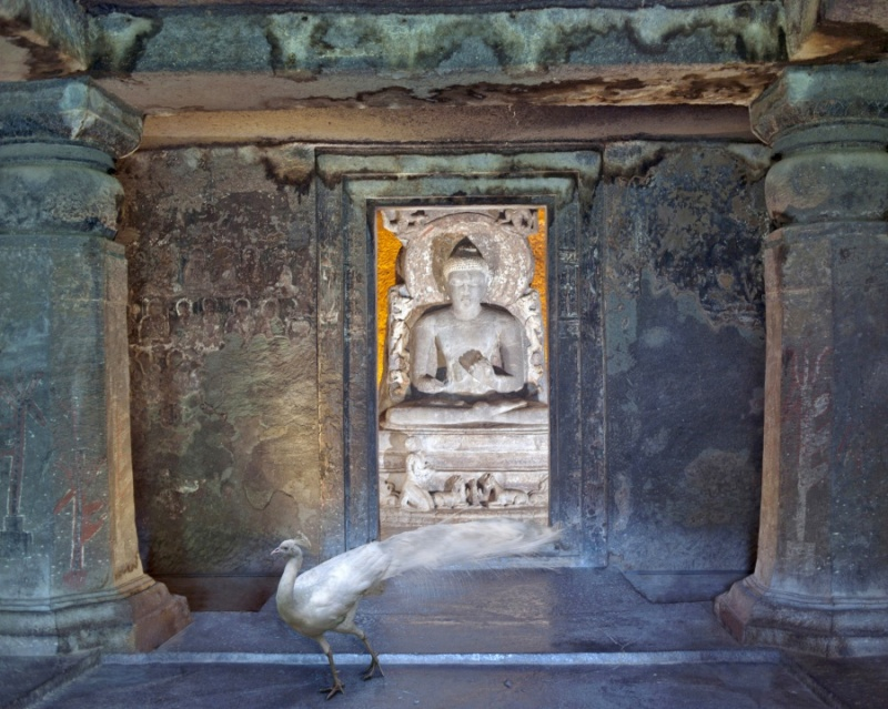 Karen Knorr photography - Animals  Attaining-Moksha-Ajanta-Caves-Ajanta