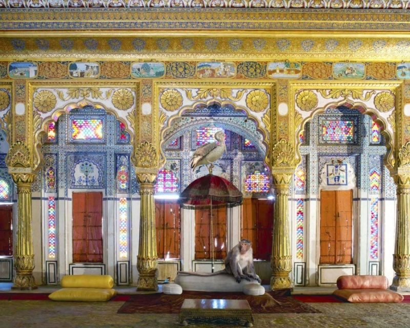 Karen Knorr photography - Animals Chicquero - Disccussions-Concerning-Rasa-Mehrangarh-Fort-Jodhpur