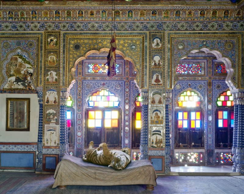 Karen Knorr photography - Animals Chicquero - The-Joy-Of-Ahimsa-Takhat-Vilas-Mehrangarh-Fort-Jodhpur