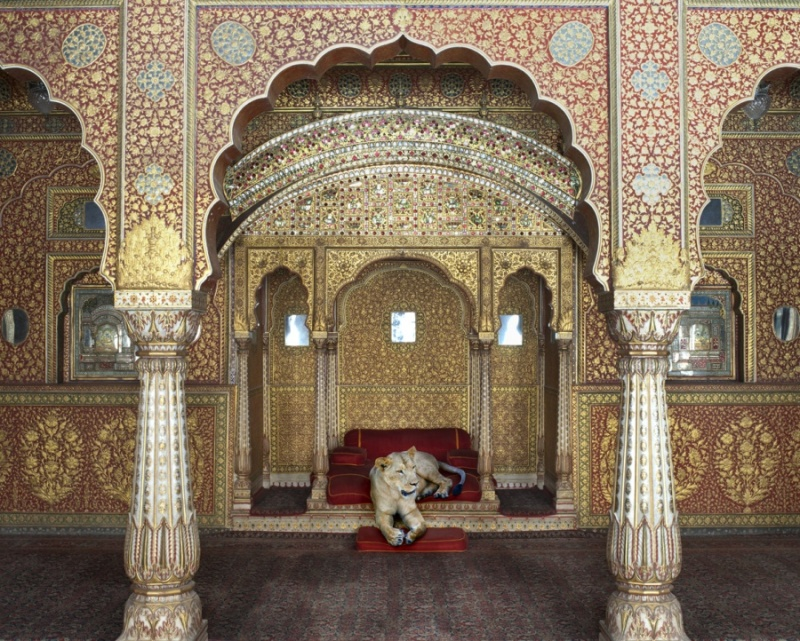 Karen Knorr photography - Animals Chicquero - Waiting-for-Atman-Junagarh-Fort-Bikaner