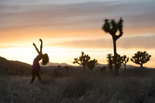 Dancers_Among_Us_ chicquero photography - dance Jamila_Glass_Joshua_Tree