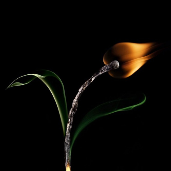 matchstick-art-stanislav-aristov-05