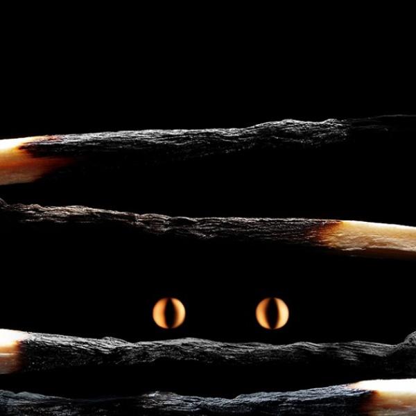matchstick-art-stanislav-aristov-09