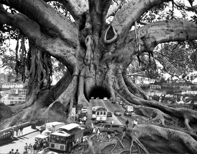Thomas barbey surreal photography - chicquero -  (10)